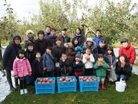 りんご収穫2.JPG